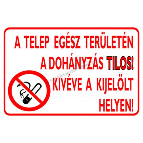A Telep Egsz Terletn Dohnyzs Tilos Kivve Kijellt Helyen Tzvdelmi Piktogram Tbla